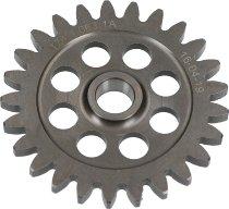 Ducati Water pump wheel - 1199 Panigale R