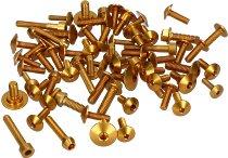 Evotech Panel screws, gold - Ducati 1200 Multistrada / S
