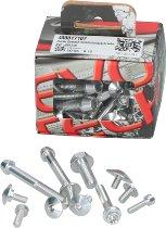 Evotech Panel screws, silver - Ducati 821 / 939 Hyperstrada