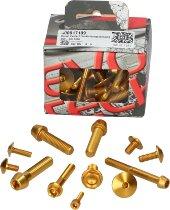 Evotech Panel screws, gold - Ducati 821 / 939 Hyperstrada