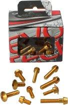 Evotech Panel screws, gold - Ducati 821 Monster