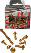 Evotech Panel screws, gold - Ducati 1200 Monster / S