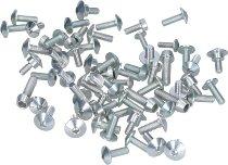 Evotech Panel screws, silver - Ducati 1199 Panigale