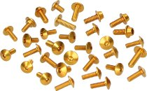 Evotech Panel screws, gold - Ducati 848 / 1098 Streetfighter