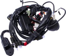 Ducati Front wiring harness