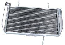 Ducati Wasserkühler Multistrada 1200