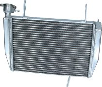 Ducati Wasserkühler Hypermotard / Hyperstrada 821