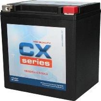 Unibat CX Series CX30-3 (12 V 30 AH)