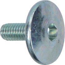 Aprilia Screw valve cover - 660 RS, Tuono, Dorsoduro, Shiver, 1200 Caponord...