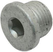Moto Guzzi Oil screw gear box M18x1,5 - Breva, Griso, Norge, Bellagio, Stelvio, California 1400...