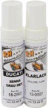 Ducati Paint stick-kit fairing senna grey metallic